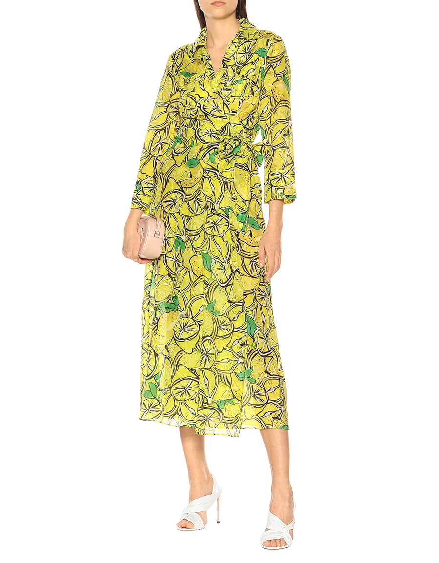 DIANE VON FURSTENBERG Printed cotton and silk maxi dress